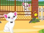 Kitten Escape From Garden