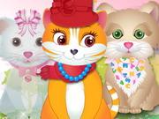 Kitty Grooming Salon 2