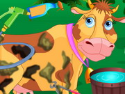My Lovely Cow Care