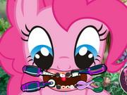 Póni fogászat