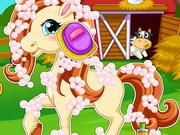 Pony Hair Salon
