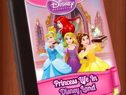 Princess Writer Life