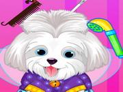 Puppy Beauty Salon